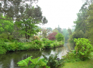 Mount Usher Garden in Wicklow, Ireland